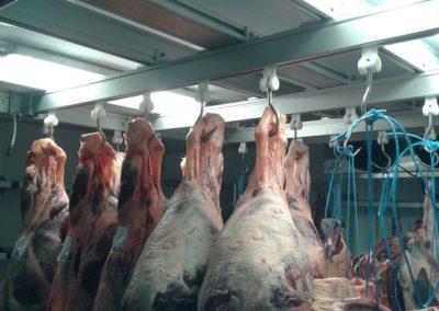 Guidovia e scaffalatura realizzata in una società agricola in provincia di Padova